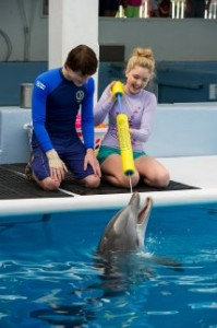 Dolphin Tale 2 2014 Movie